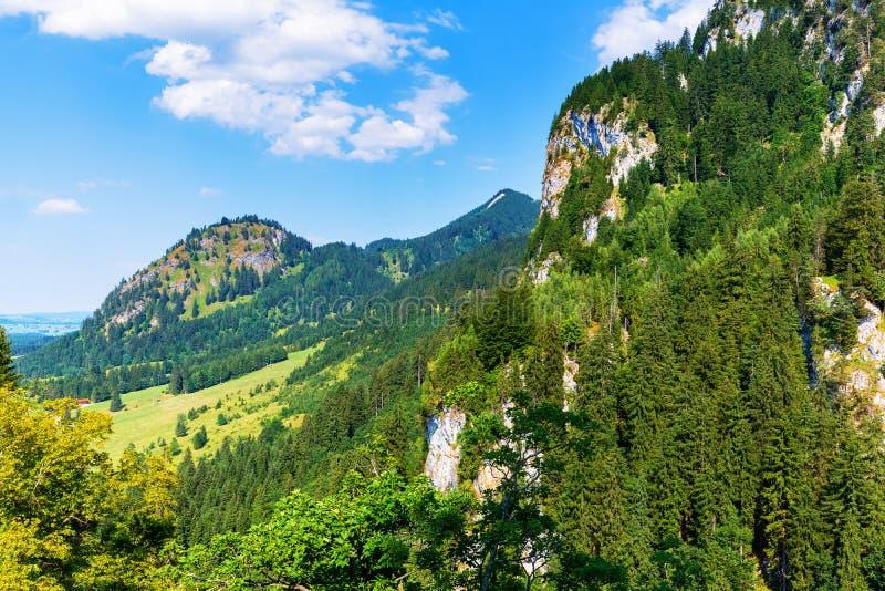 Szenische Sommerlandschaft mit Bergen, Hügeln und Wald lizenzfreie stockfotos