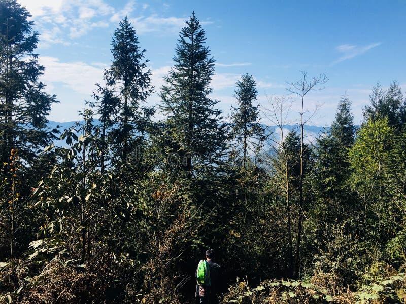 Szenische Stelle des Erholungsortes, Landschaftsmalerei, grünes Wasser, grüner Berg, goldener Hügel, silberner Berg stockfotografie