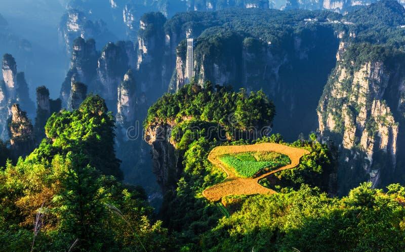 Szenische Stelle Zhangjiajie in China lizenzfreies stockbild