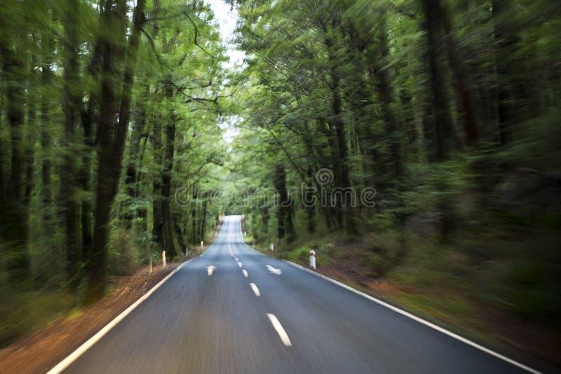 Szenische Straße zu Milford Sound lizenzfreies stockfoto