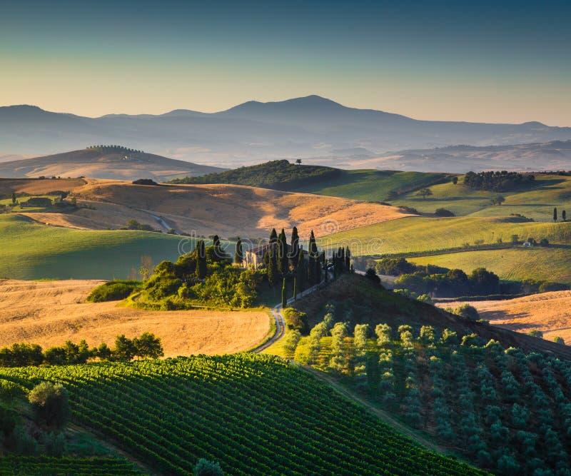 Szenische Toskana-Landschaft im goldenen Morgenlicht stockfotografie