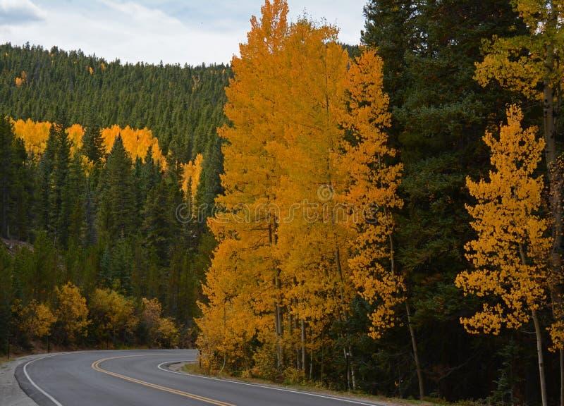 Szenischer Herbst-Antrieb, zum von Evans in Colorado anzubringen lizenzfreie stockfotos