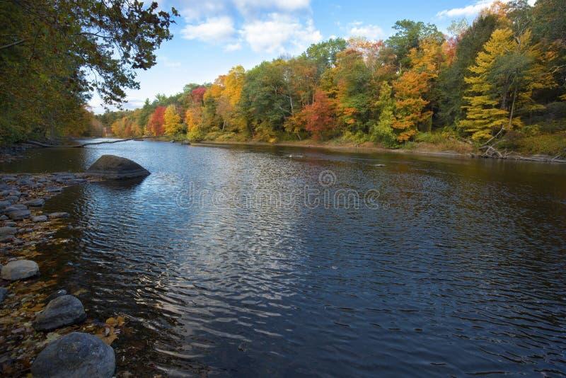 Szenischer Herbstlaub auf dem Farmington-Fluss, Bezirk, Connecticut stockbild
