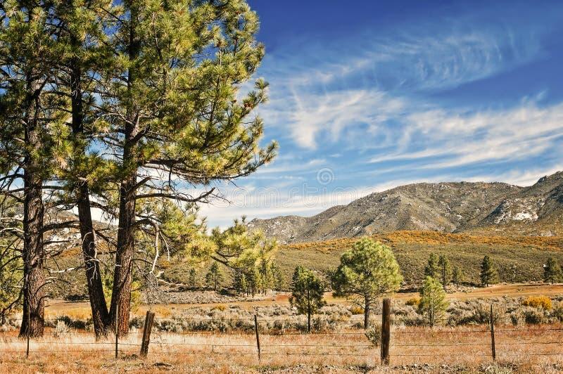 Szenischer Seitenweg, Süd-Kalifornien stockbilder