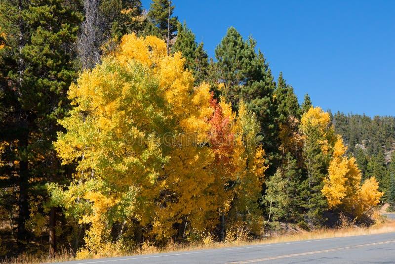 Szenischer Seitenweg von Colorado lizenzfreies stockfoto
