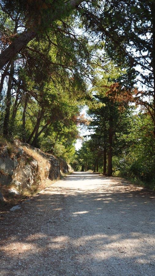 Szenischer Weg im ruhigen Park in der Spalte, Kroatien stockbilder