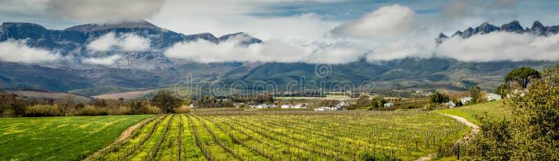 Szenisches Panorama von Bergen und von Weinbergen nahe Wellington Western Cape stockfoto