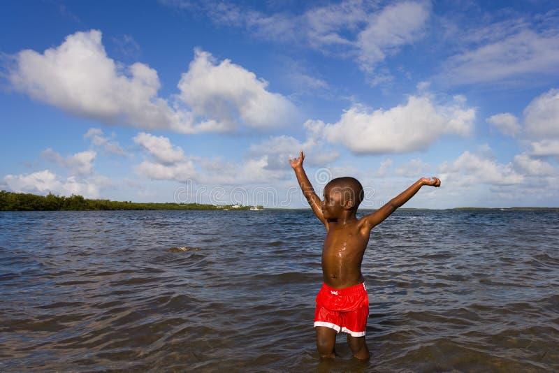 szereg różnych plażowych zdjęcia royalty free
