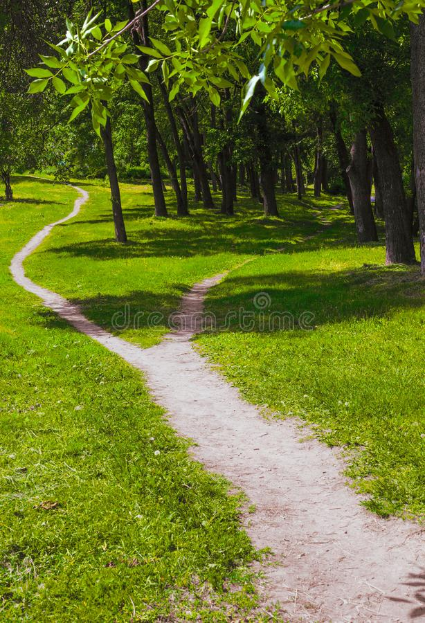 Szeroka ścieżka w trawa rozłamach w dwa wąskiej ścieżki w parku LATO krajobraz zdjęcia stock