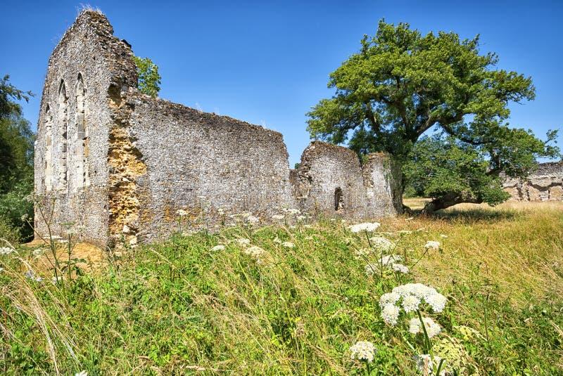 Szeroki kąta lata widok ruiny przy Waverley opactwem, Surrey obrazy royalty free