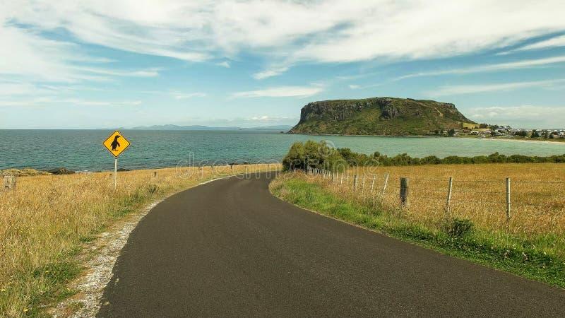 Szeroki strzał dokrętka i pingwinu drogowy znak przy Stanley, Tasmania zdjęcia royalty free