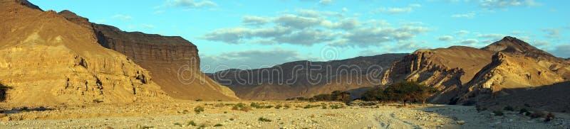 Szeroki wadi zdjęcie stock