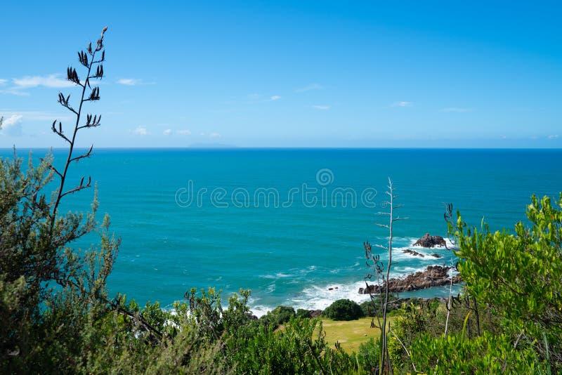 Szeroki widok Południowy Pacyfik od skłonu góra Maunganui Tauranga Nowa Zelandia zdjęcia royalty free