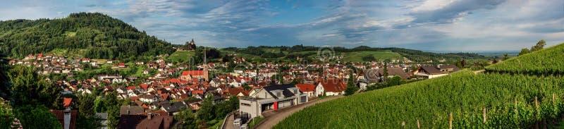 Szerokich dzierżawień panoramiczny krajobrazowy widok zielona dolina w Schwartzwald zdjęcie royalty free