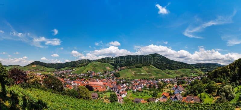Szerokich dzierżawień panoramiczny krajobrazowy widok zielona dolina w Schwartzwald zdjęcia stock