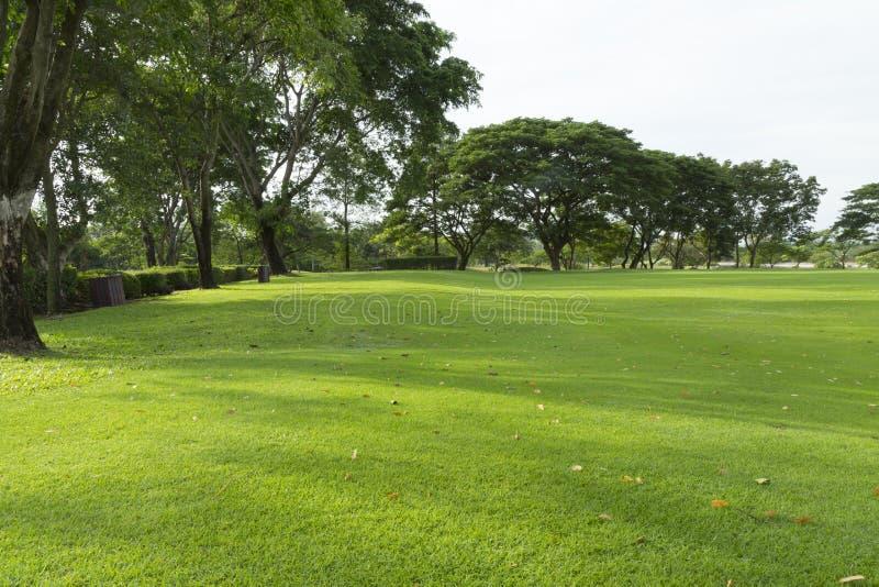 Szeroko pole golfowe w bardzo ładnym dniu w lecie zdjęcie stock