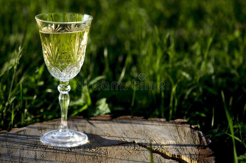 Szkło biały wino na natury tle obrazy stock