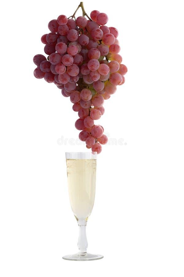 Szkło biały wino z winogronami na białym tle zdjęcie stock