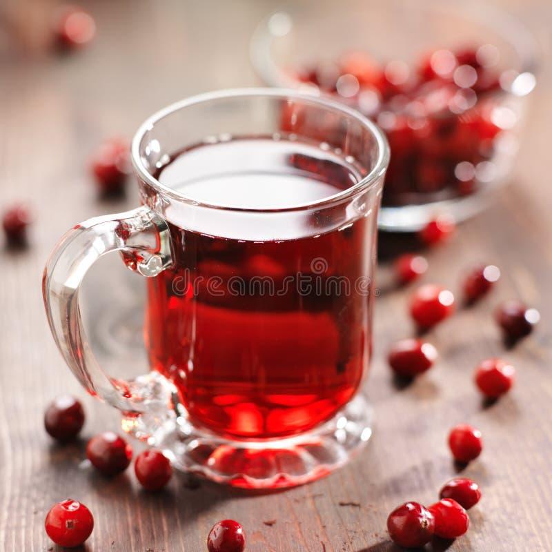 Szkło cranberry sok obrazy stock
