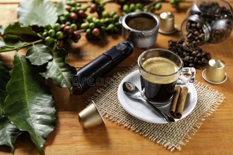 Szkło jasny szkło gorąca kawa na drewnianym stole Pomarańczowy drewniany pinus zdjęcie royalty free