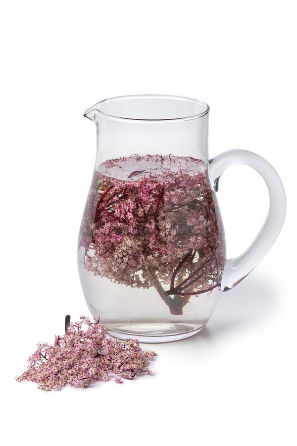 Szkło może z zimno menchii elderberry okwitnięcia napojem fotografia stock