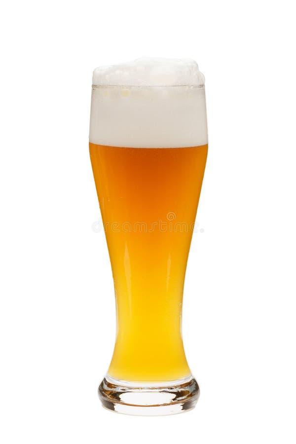 Szkło odizolowywający przeciw białemu tłu pszeniczny piwo zdjęcie stock