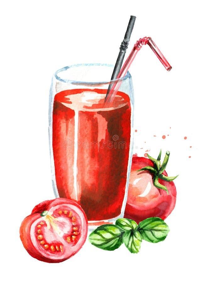 Szkło pomidorowy sok i basil Akwareli ręka rysujący illustrat ilustracji