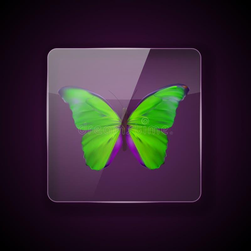 Szkło rama na ciemnym tle z kolorowym zielonym motylem r?wnie? zwr?ci? corel ilustracji wektora ilustracji