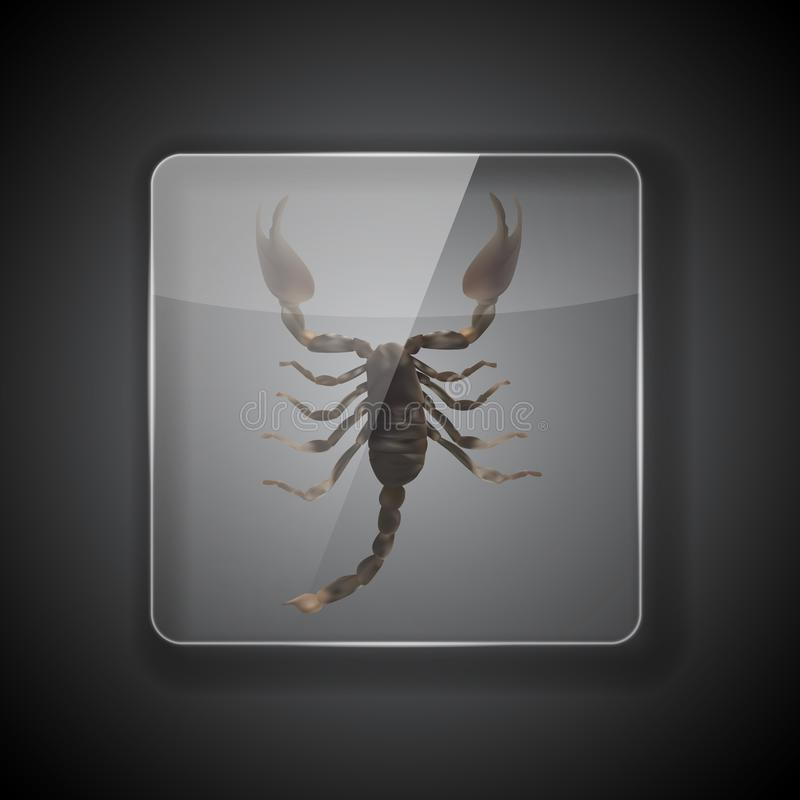 Szkło rama na ciemnym tle z skorpionem r?wnie? zwr?ci? corel ilustracji wektora ilustracji