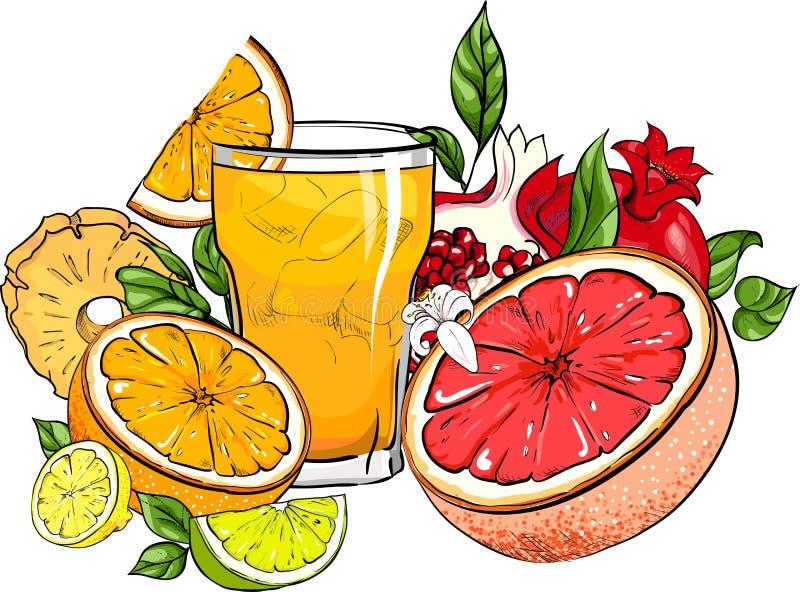 Szkło sok i tropikalne owoc na bielu royalty ilustracja