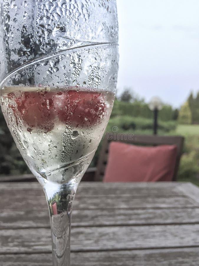Szkło szampan na stole przy ogródem fotografia royalty free