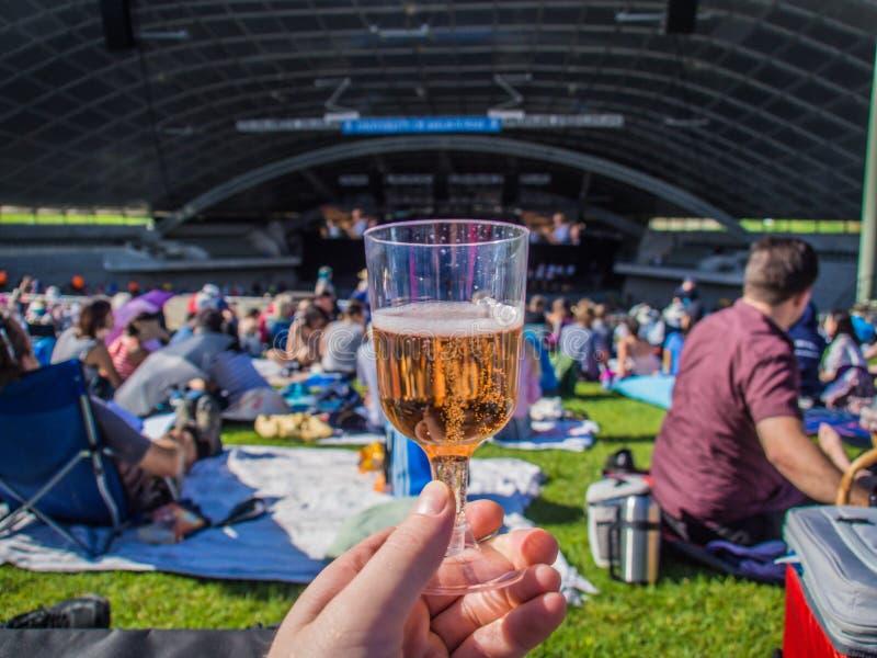 Szkło wino przy koncertem obrazy royalty free
