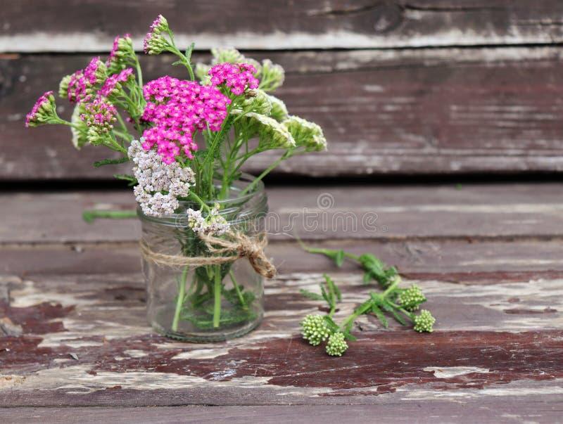 Szkło z kwiatu achillea millefolium, powszechnie znać jako krwawnik lub pospolity krwawnik na wieśniaku wietrzał drewniane deski zdjęcia stock