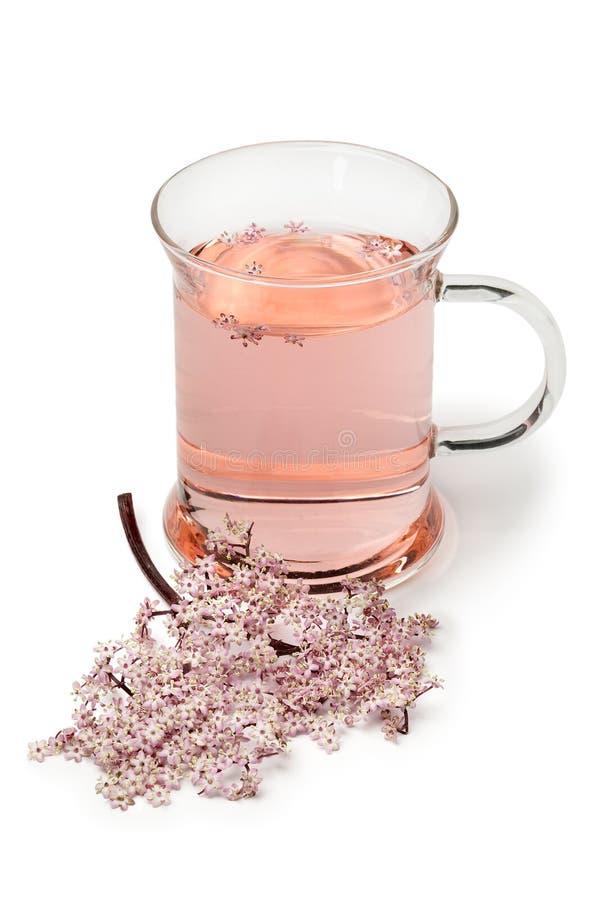 Szkło z różową elderberry okwitnięcia herbatą obrazy royalty free