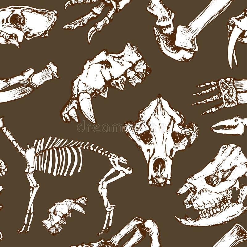 Szkicowy prehistorical zwierzę wzór Archeologii ekskawacje, kościec i czaszka bezszwowy wektor, ilustracja wektor