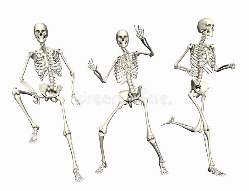 szkielety royalty ilustracja