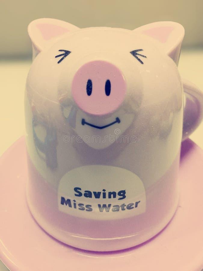 Szklana świnia obrazy royalty free