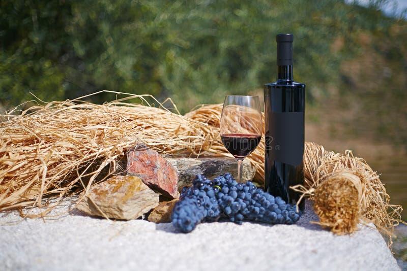 Szklana butelka i szkło czerwone wino na kamienia stole obraz royalty free