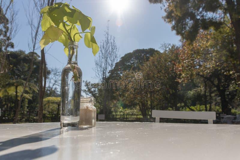 Szklana butelka Na stole obraz royalty free