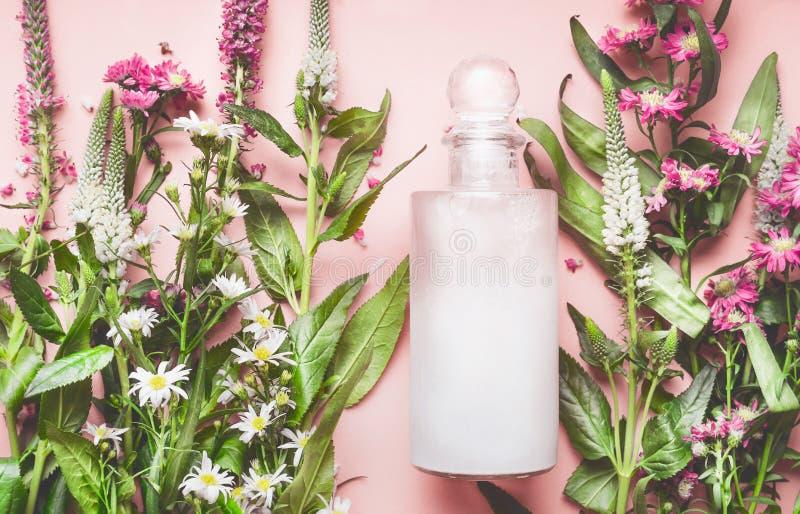 Szklana butelka z naturalnym kosmetycznym produktem: płukanka lub szampon z świeżymi ziele i kwiatami na różowym tle, odgórny wid obraz royalty free