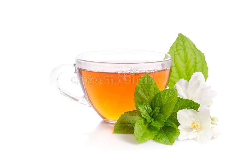 Szklana filiżanka herbata z jaśminów kwiatami i liśćmi mennica zdjęcia royalty free
