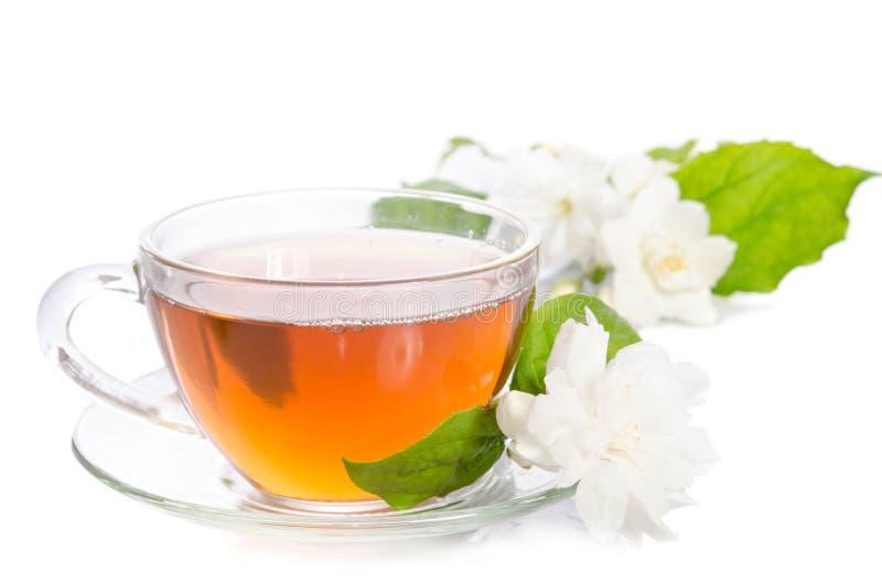 Szklana filiżanka herbata z jaśminów liśćmi i kwiatami obrazy royalty free