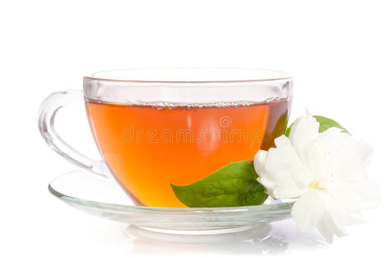 Szklana filiżanka herbata z jaśminów liśćmi i kwiatami fotografia royalty free