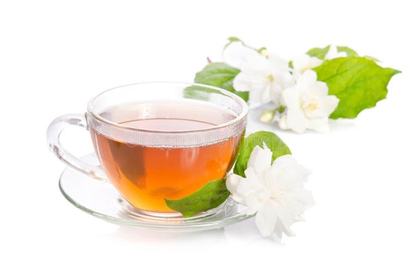 Szklana filiżanka herbata z jaśminów liśćmi i kwiatami zdjęcia royalty free