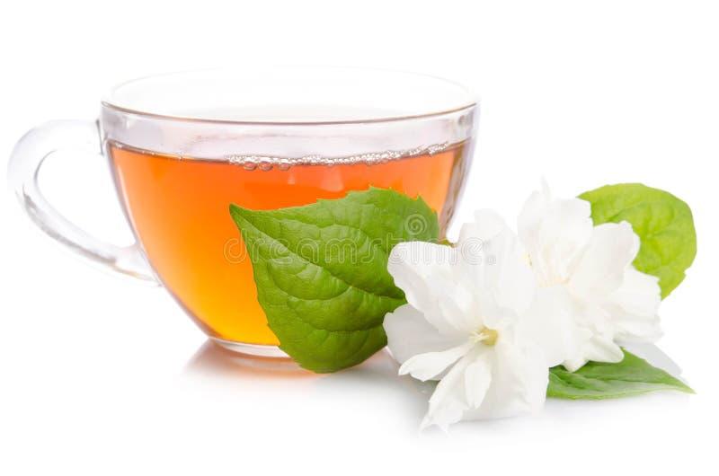 Szklana filiżanka herbata z jaśminów liśćmi i kwiatami obraz stock