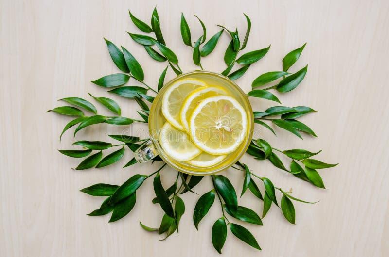Szklana filiżanka imbirowa herbata z cytryną słuzyć wokoło ramy zieleni opuszcza ruscus kwiaty na lekkiej drewnianej wieśniak ści fotografia stock