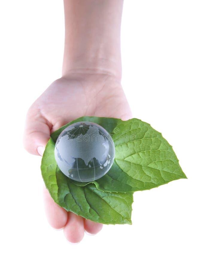 Szklana kula ziemska w liściach i dziecka ` s ręce odosobnionych na białym tle, zdjęcie stock