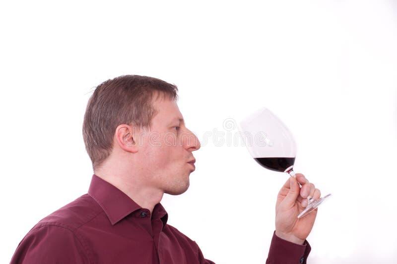 szklanego mienia mężczyzna czerwony degustaci wino fotografia royalty free