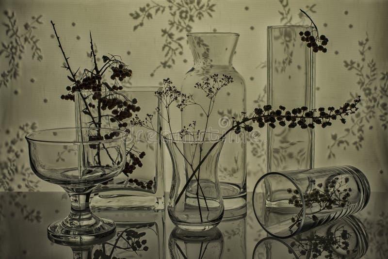Szklani naczynia z gałązkami obraz royalty free