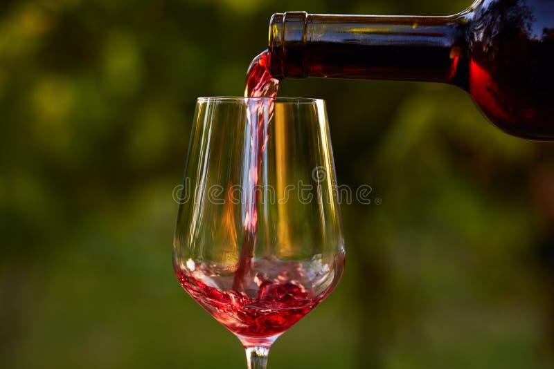 szklany dolewania czerwone wino fotografia royalty free